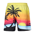 Unisex Seaside Swimwear Men Board Shorts 3D Sunset Sunrise Coconut Palm Shorts Man Bermuda Beach shorts