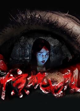 《惊魂七夜》2016年中国大陆惊悚,恐怖电影在线观看