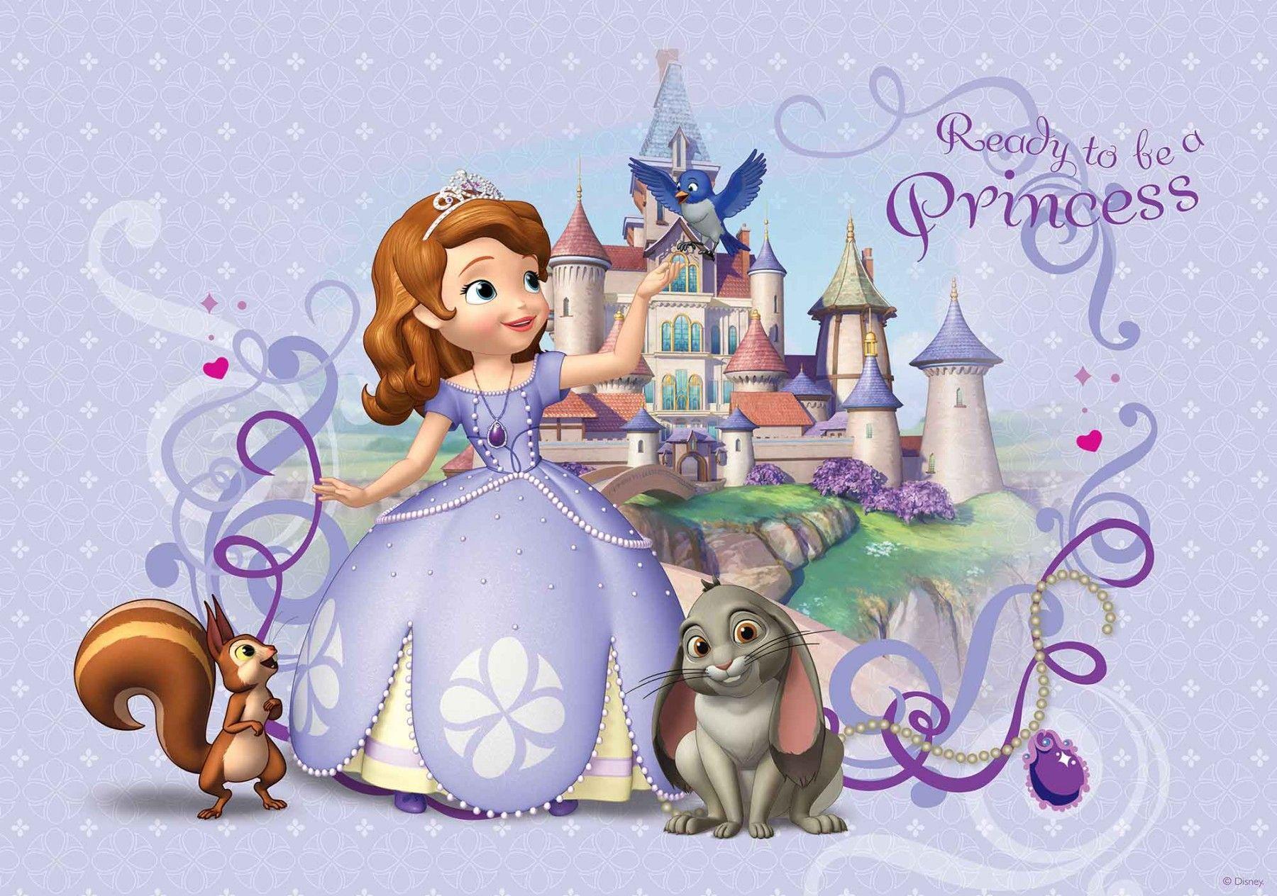 Castle Princess Sofia The First Clover Backdrops High Quality