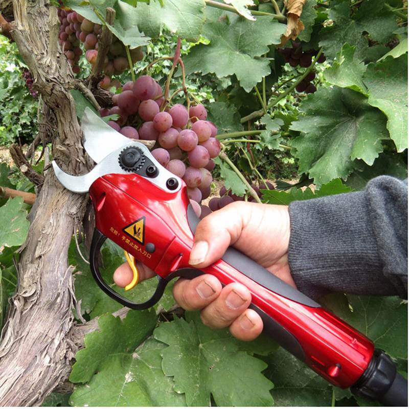 Electric Pruning Shears Rechargeable lithium battery Garden Cordless Scissors Fruit Tree Electrical Cutting Tools SCA1 цена и фото