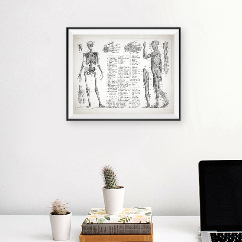 Human Anatomy Canvas Painting