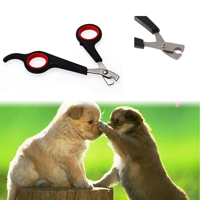 New Convenient Pet Nail Claw Grooming Scissors Clippers For Dog Cat Bird Gerbil Rabbit Ferret Small Animals