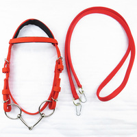 Durable Horse Head Collar Adjustable PVC Horse Bridle With Rein Red Webbing Horse Halter Horse Racing Equipment