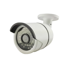 POE Audio HD 1080P IP Camera Outdoor Network P2P CCTV Security 36 IR Night Vision