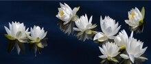 Diamant malerei kreuzstich voller quadrat strass Weißen lotus blume diamant mosaik stickerei raumdekoration