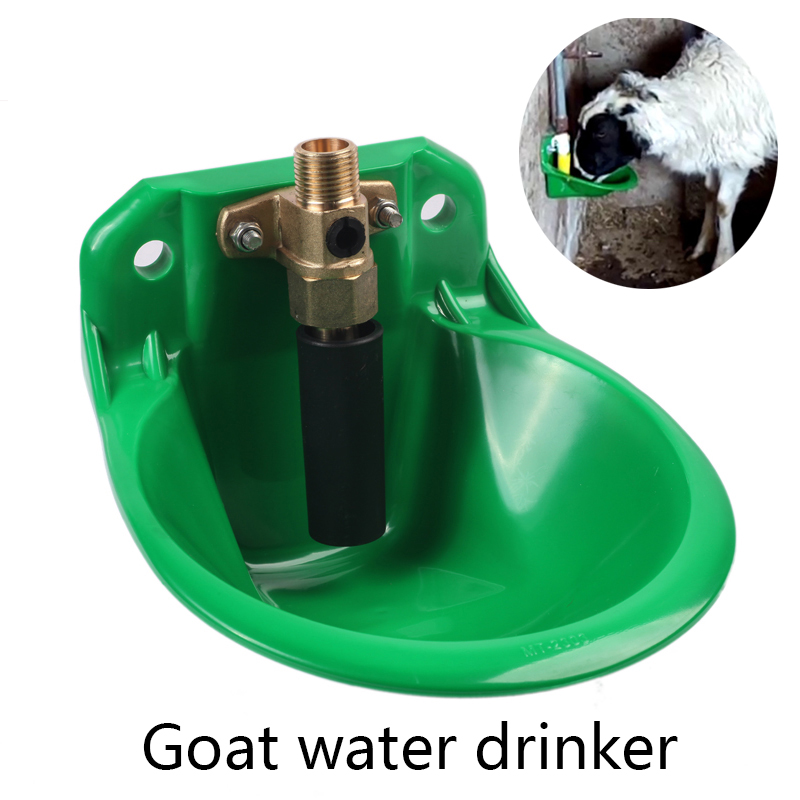 Automatic Drinking water Dispenser with Bowl and Plastic Valve for Sheep