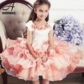 2015 Nova Princesa vestido da menina de vestido de princesa de menina vestido infantil princesa vestidos de noche vestido de festa infantil
