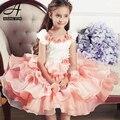 2015 Nuevo vestido de la Princesa niña vestido de princesa vestido infantil menina princesa vestidos de noche vestido de festa infantil