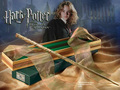1pcs Harry Potter Wand Hermione Granger Magic Wand Cosplay Magic Trick toys