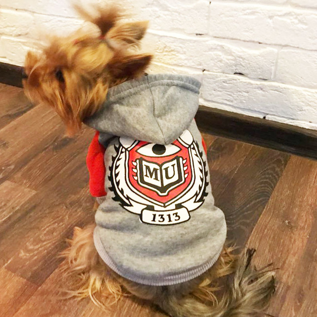 Dog Coat for Small Dogs
