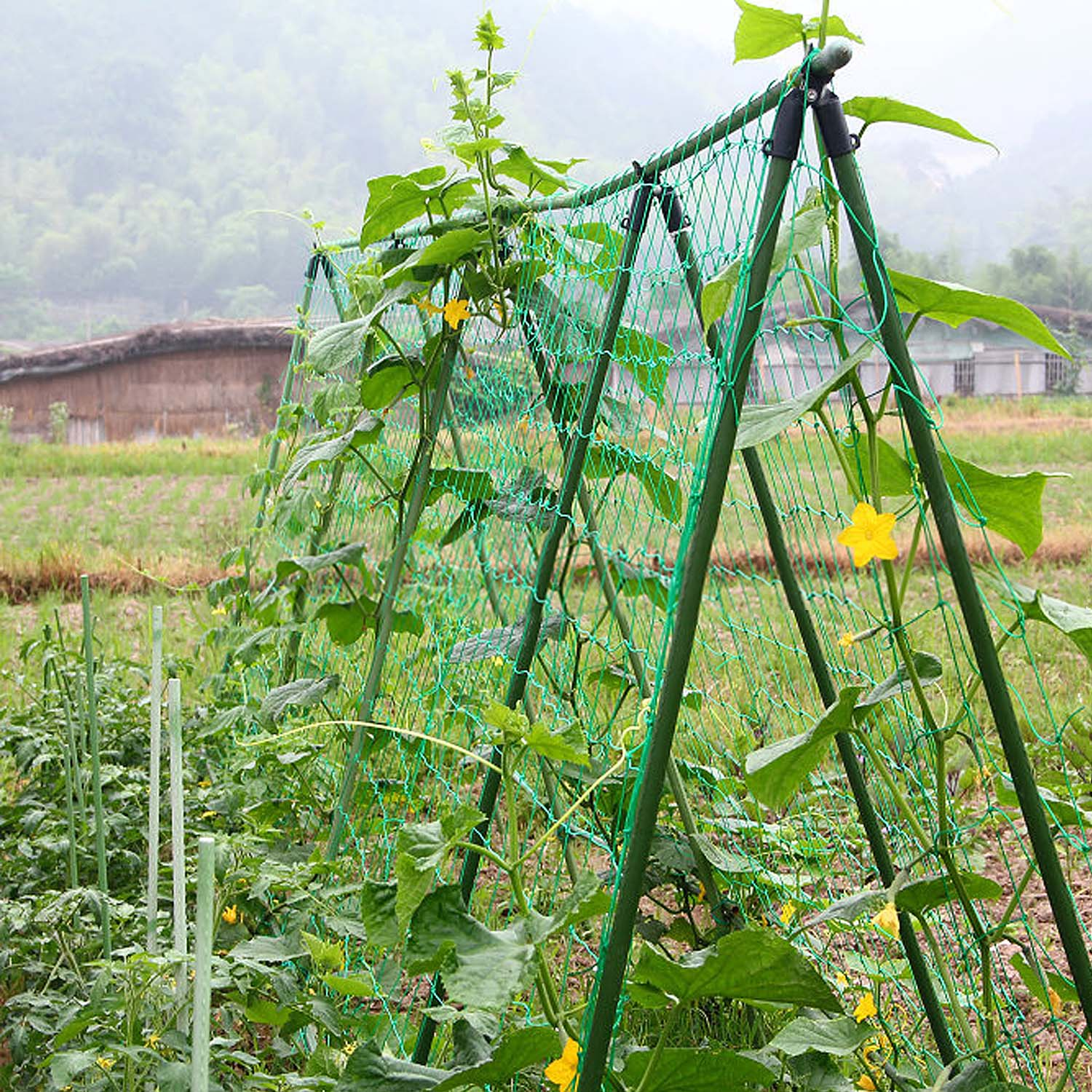 Garden Green Nylon Vegetables Fruits Nylon Trellis Netting Support Net For Climbing Vine Plants Grow Fence Anti-bird Net