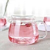 Hot Venda Nova Chegada 500 ML Teapot de Vidro Resistente Ao Calor Hialina Escritório Jogo de Chá de Flor de café Tea Pot Com Filtro de Chá conjuntos