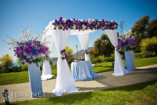 compare prices on wedding canopy decoration- online shopping/buy