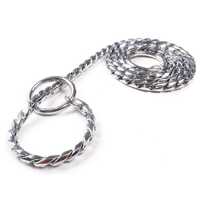 dog chain leash