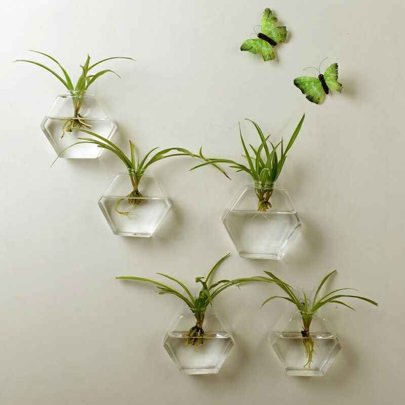 Creative Hexagon Wall Hanging Glass Plant Flower Vase Hydroponic Fish Tank Home Decoration Sending Seamless Nall