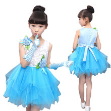 New princess Girls Swan Ballet Tutu Skate Dance dress Birthday Party Dresses girls Dancing show Clothes Free shipping
