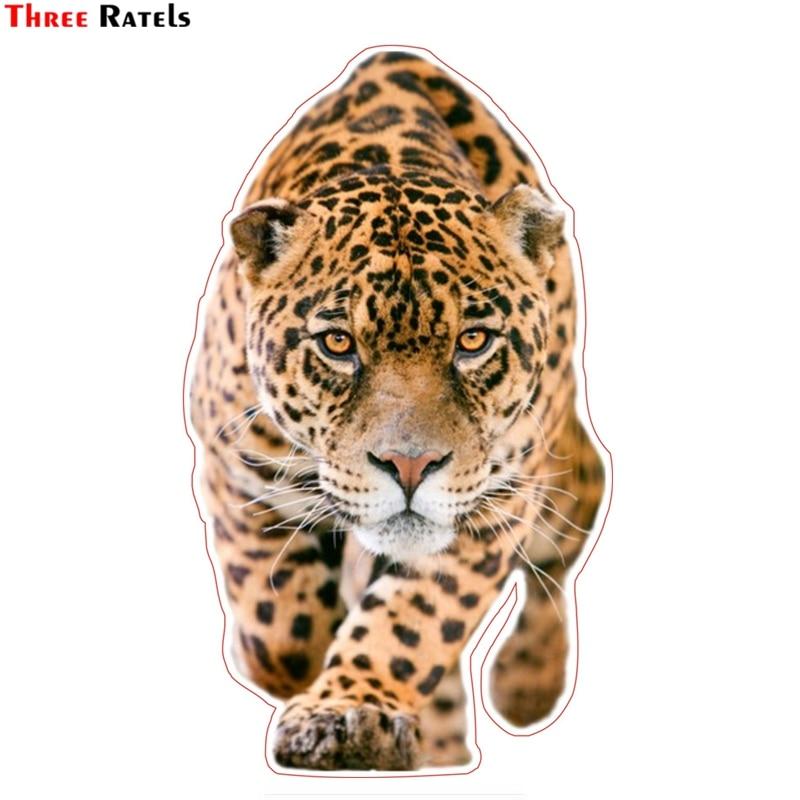 Three Ratels TZ-1308# 22*12.9cm Walking Leopard Car Stickers Funny Car Sticker Auto Decals