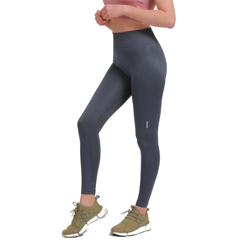 Yoga Pants Shark High Quality Seamless Leggings High Elastic Exercise Tights Women Pants for Fitness Yoga Running Sports in Yoga Pants from Sports Entertainment