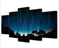 5 Pieces Modern Beatiful Printed House Poster Painting On Canvas Meteor Shower Wall Art Picture Home