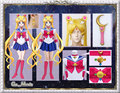 Sailor Moon Cosplay Costume Outfit Halloween Uniform Dress+Gloves+Bow+Shoes Cover+Headdress+Earings+Wand