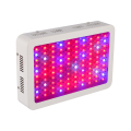 Double Chips 1000W LED Grow Light 380-730nm Full Spectrum LED Plant Grow Light For Indoor Plants Flowering And Growing