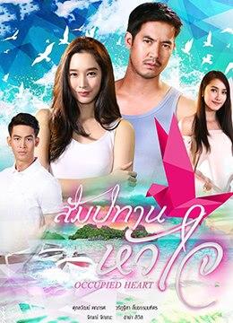 《心之特许》2017年泰国爱情电视剧在线观看