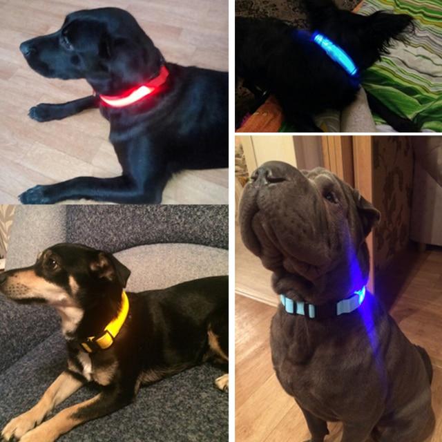 Nylon LED Pet Dog Collar 3