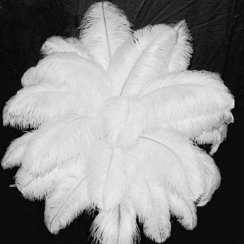 الجملة الطبيعي الصلب قضيب 100 قطعة الأبيض النعامة الريش 70 75cm28 30 'الزفاف الميلاد زينة عيد الميلاد مجانا-في ريشة من المنزل والحديقة على  مجموعة 1