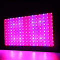 2pcs 900W Led Grow Light Full Spectrum Led Plant Growth Lighting for Flower Indooe Greenhouse Grow Box Tent
