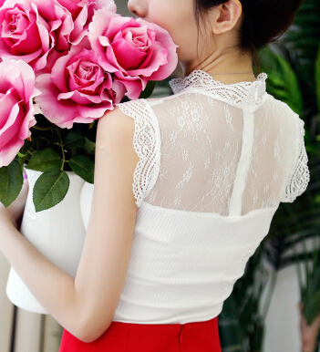 Summer New  Ladies Vestidos Vintage Lace Chiffon Blouses Shirts Women Stand Collar Sleeveless Casual Blusas 4