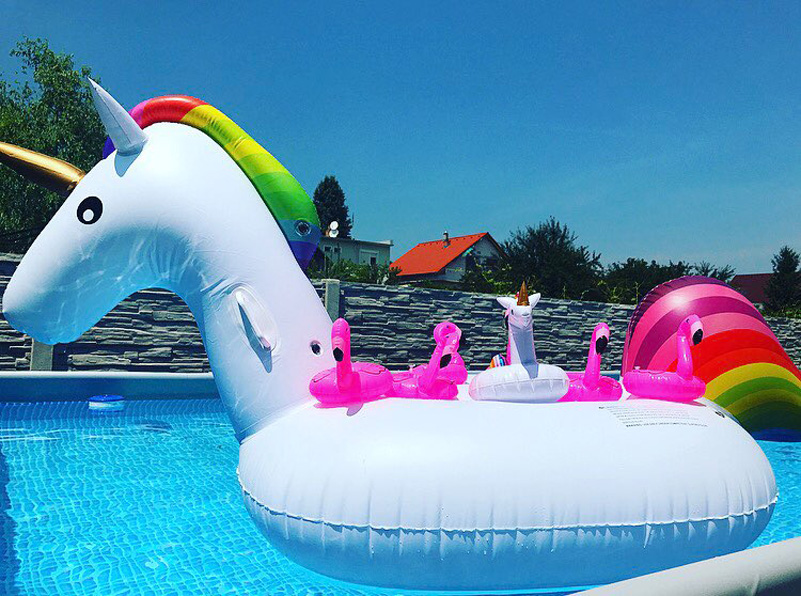 Giant Inflatable Unicorn Pool Ring 13