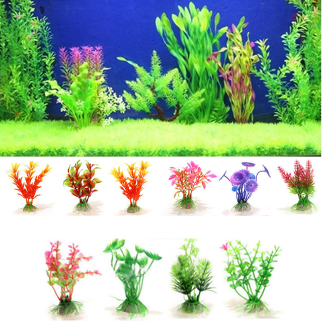 Aquatic plants fish tank water plant aquarium sea for Aquatic decoration