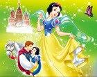 8x8FT Snow White Fai...