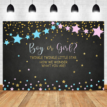 NeoBack Twinke Twinkle Little Star Gender Reveal Backdrop Pink and Blue Baby Shower Party Background Cake Table Decorations