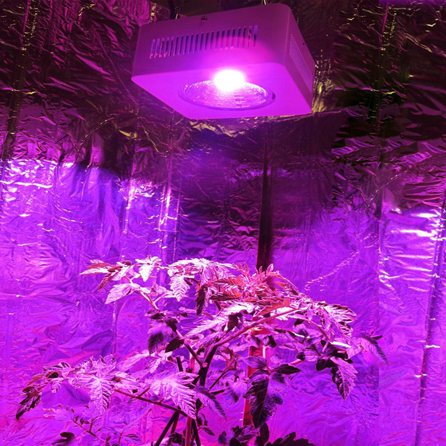 populargrow 2PC/ LOT low energy COB 200w Full Spectrum led grow light Hydroponic Lighting for & populargrow 2PC/ LOT low energy COB 200w Full Spectrum led grow ... azcodes.com