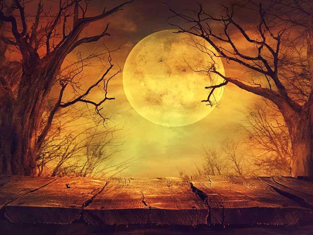Capisco фотографический фон с деревянным полом Луна Хэллоуин лес вечерние Детские фотосессии фоны для фотостудии
