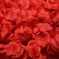 Rose Petals New 2017 Flores for Wedding Or Event Party Decorative 2000 pcs/lots Flower Petal