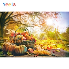 Yeele Autumn Harvest Pumpkin Forest Basket Photography Background Happy Thanksgiving Day Photocall Backdrop For Photo Studio