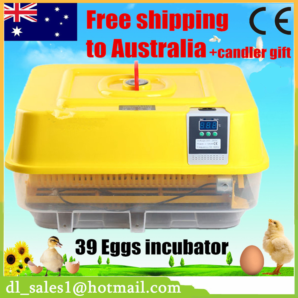CE Approved Eggs Incubator Hatcher Full Automatic Incubator Chicken Egg Incubator Display Poultry Handle Durable Service chicken duck turkey bird egg incubator transparent plastic incubator ce approved full automatic incubator for household