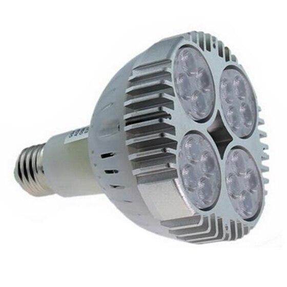 Lampholy E27 45 W PAR30 LED Lumière Blanc