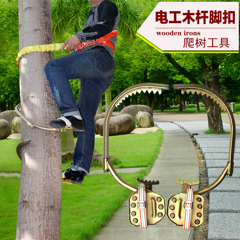 Foot Tree Shoes Price