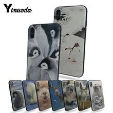Yinuoda lindo animal koala sello pingüino alpaca Oso polar funda de teléfono Linda para 6s iphone 6 plus 7 7plus 8 8plus 5 5S 5C funda(China)