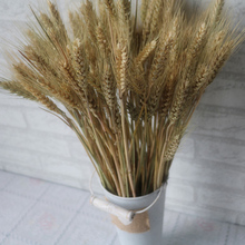 100pcs/lot Artificial Wheat Ears Natural Dried Flowers Grain Bouquet for Wedding Party Decoration DIY Craft Scrapbook Home Decor