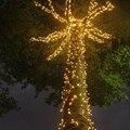 防水 10 メートルに 100 メートル 220V 110 220v の妖精文字列の Led ライトホーム花輪ウェディングパーティー屋外ホリデークリスマスツリーの装飾