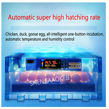 80W Miniature chick incubator 64 pieces Automatic incubator Household small incubator Multi-functional hatching egg 1pc