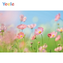 Yeele Landscape Photocall Flower Sea Room Painting Photography Backdrops Personalized Photographic Backgrounds For Photo Studio
