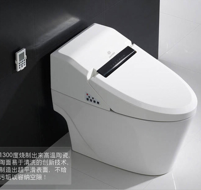 Cherry Smart High End Toilet Seat Stainless Steel Spray Bar