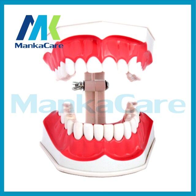Extrêmement Manka Soins Orale Dent modèle Maternelle enfants brossage  NZ91