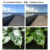 Espelho Polarizado Lentes de Substituição Para O Caminho RadarLock Verde esmeralda Vented Sunglasses Quadro 100% UVA & Uvb