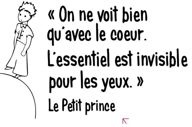 French Quotes   French Quotes The Little Prince Wall Stickers French Quote Home